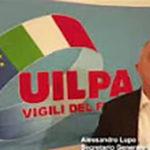 UILPACHANNEL_1-150x150 UILPAVVF TV