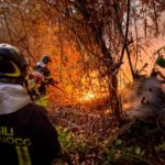 incendio-bosco-vigili-150x150 NOTIZIARIO