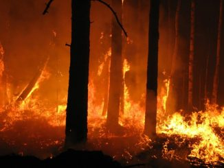 Incendi-boschivi-326x245 ATTIVITA' DI ANTINCENDIO BOSCHIVO STAGIONE ESTIVA 2021.